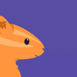 squirrel app pic