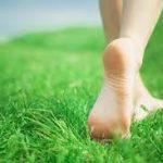 walks on grass